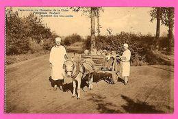 CPA -  PIETREBAIS  --  Sanatorium  Du  Domaine  De  La  Chise  --  Transport  Des  Tout-petits - Incourt