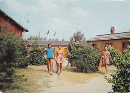 ITALIE---ROVIGO--ROSOLINA MARE-- -village De Vacances Du T. C. F.---voir 2 Scans - Rovigo