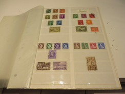 WELTWEIT  Posten  O /  * /  ** /   MARKEN  Auf  STECKSEITEN - Briefmarken