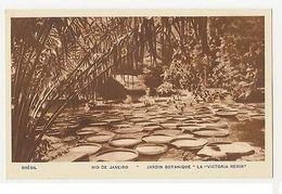RIO DE JANEIRO - JARDIM BOTANIQUE LA VICTORIA REGIA - EDIT TIPO GUANABARA (1799) - Cartes Postales