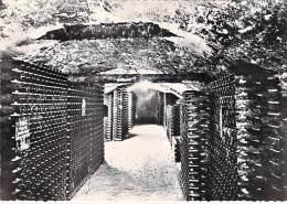 VIGNES Vin Bourgogne - Maison PATRIARCHE (21) Vue D'un Caveau à Bouteilles - CPSM Dentelée Noir Blanc GF - Vigne