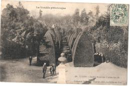 ----85 -----  LUCON  Jardin Dumaine L'allée Des Ifs - Timbrée TTB - Lucon