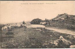 Saint Laurent Les Bains :  La Bastide , Dolmen De Tors  Avec Berger  Moutons Et Vaches - Other Municipalities
