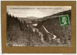 Saint Germain La Montagne (42) CPA - Bois De Sapins. Route De Vasvres - France