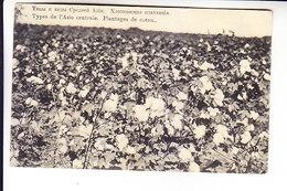 Middle Central Asia Russian Empire UZBEKISTAN Cotton Plantation - Uzbekistan