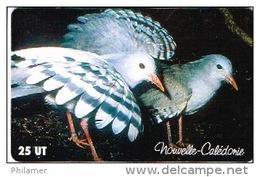 Phonecard Telecarte Nouvelle Caledonie Noumea  NC101 Oiseau Cagou Parc Forestier Cote 5 Ut TB - Nieuw-Caledonië