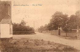 Hermalle S/Argenteau Rue Du Tilleul - Sonstige