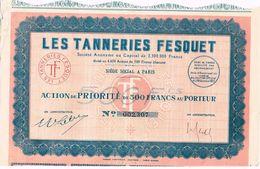 Ancienne Action - Les Tanneries Fesquet - Titre De 1922- - Industrie