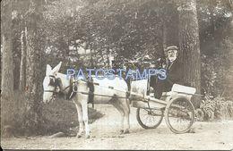 75943 ITALY SALSOMAGGIORE PARMA COSTUMES MAN IN CART A HORSE POSTAL POSTCARD - Italia