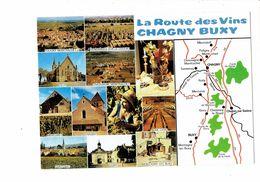 Cpm - La Route Des Vins CHAGNY BUXY - Vendanges PULIGNY CHASSAGNE RULLY SANTENAY GIVRY MONTAGNY Raisin - Chagny