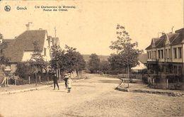 Genk Genck - Cité Charbonnière De Winterslag - Avenue Des Chênes (animation, 1921) - Genk