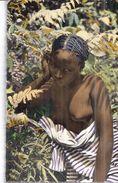 2298  -AFRIQUE NOIRE   JEUNE FEMME  CPSM PF  ED. HOA QUI  PARIS - Sin Clasificación