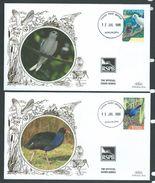 Tonga 1989 Benham Illustrated Bird Covers X 2 Unaddressed With 5s Tern & 20s Swamp Hen - Tonga (1970-...)
