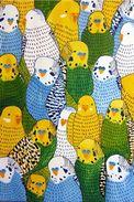Perroquets - Carte Photo Moderne - Oiseaux