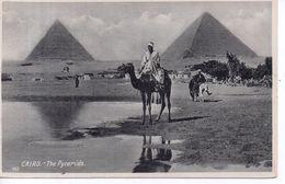 Le Caire - - Le Caire