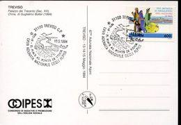24091 Italia, Special Postmark 1994 Treviso Adunata Degli Alpini, Il Piave Al Ponte Di Vidor - Prima Guerra Mondiale