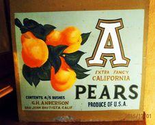 """Metallschild """"California Pears"""" Handgemalt - Lebensmittel"""