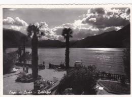 Lago Di Como - Bellagio (174) - Como
