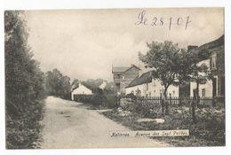 Nalinnes Avenue Des Sept Petites Carte Postale Ancienne 1907 Ham Sur Heure - Ham-sur-Heure-Nalinnes