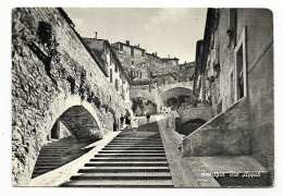 PERUGIA - VIA APPIA NV FG - Perugia