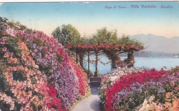 Lago Di Como - Villa Carlotta - Giardino (22785) * 1. 8. 1926 - Como