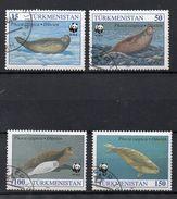 TURKMENISTAN   Série De Timbres  ( Ref 379 B ) Animal - Phoque - Turkménistan