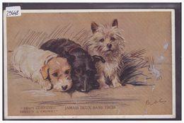 CHIENS - TB - Honden