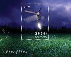 GUYANA 2014 ** Fireflies Glühwürmchen S/S - OFFICIAL ISSUE - DH9999 - Insekten