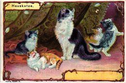 6 Cards Complete Litho Chromo Set C1900 PUB Crême LIEBIG CREME - German Text  Serie 5350 Cats Katzen Chats Katten - Liebig