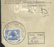 Lebanon Liban 500 P Revenue Stamps On Used Passport Visas Page 1971 - Liban