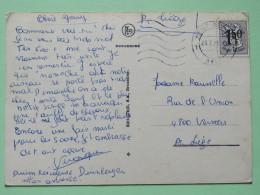 "Belgium 1971 Postcard """"chimp Monkey Chimpanze"""" Heist To Liege - Lion - Belgium"