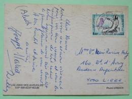 "Belgium 1981 Postcard """"blind Friend Dog"""" Herstal To Liege - Disabled Persons Sport Fencing - Belgium"