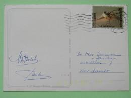 "Belgium 1987 Postcard """"snow Landscape"""" To Hasselt - Newspaper - Belgium"