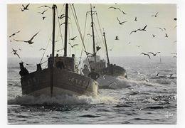 BATEAUX DE PECHE EN BRETAGNE - 3 CPM GF VOYAGEE - 75 - Pêche