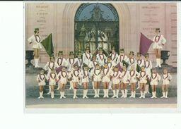 45 MONTARGIS Les Majorettes - Montargis
