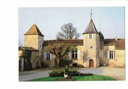 Cpm - 16 - BLANZAC - Manoir Du Maine Giraud - Tour - Poule - Girouette - Autres Communes
