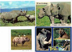 Lot 4 Cpm - RHINOCÉROS - - Rhinocéros