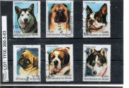 THEMATIC-TOPICS#DOGS#BENIN# SMALL SELECTION# (TFIX-300-3 (03) - Hunde