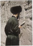 Orthodoxe Jood Aan Het Bidden Bij De Klaagmuur / Orthodox Jew, Western Wall - (Israel) - Israël