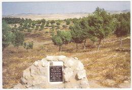 Een Nederlands Park In De Negev Woestijn - (Plaquette Dr. H.J. Van Eck) -  (Israel) - Israël