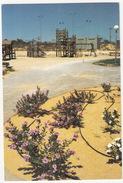 Kinderspeelplaats In Kadash Barnea -  (Israel) - Israël