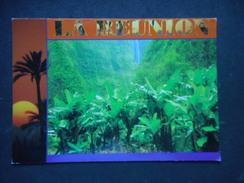 "CP - LA REUNION ""salazie3 - Réunion"