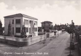 Argenta - Cassa Di Risparmio E Viale Roiti * 28. 7. 1955 - Ferrara