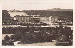 WIEN SCHONBRUNN - Château De Schönbrunn