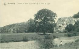 VIEUXVILLE - L'Ourthe, La Roche Aux Corneilles Et Les Ruines De Logne - Ferrières