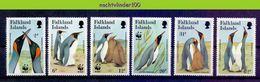 Mza117s6 WWF VOGELS PINGUINS BIRDS PENGUINS VÖGEL AVES OISEAUX FALKLAND ISLANDS 1991 PF/MNH - W.W.F.