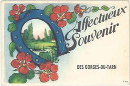 Villes, Système Dépliant – Gorges Du Tarn, Lozère, Fer à Cheval - Gorges Du Tarn