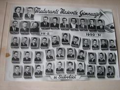 High School Graduates, Subotica (Szabadka), 1950-1951, Yugoslavia - Diploma & School Reports