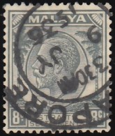 STRAITS SETTLEMENTS - Scott #223 King George V / Used Stamp - Great Britain (former Colonies & Protectorates)