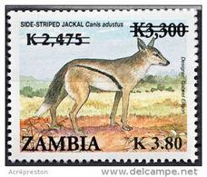 Zm1097 ZAMBIA 2013, SG 1097 New Currency K3.80 On K2,475 On K3,300 Animals (Jackal) (SG1037)  MNH - Zambia (1965-...)
